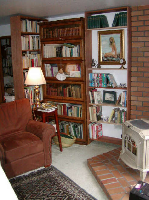 Der Holzofen in der Bibliothek / the woodstove in the library